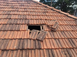 Suspeito invadiu o imóvel pelo telhado.